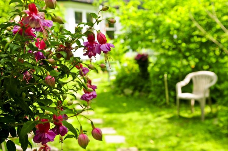 bysamia-aromaterapia-Aromas-que-trazem-bem-estar-para-a-casa