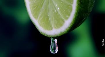 use-oleo-essencial-de-limao-contra-o-estresse