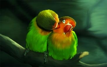 passaros-amor-bysamia-aromaterapia